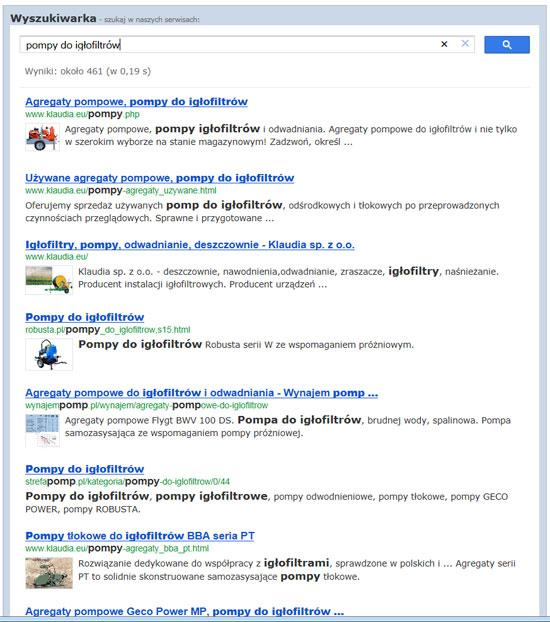 przykładowe wyniki wyszukiwania dla frazy: pompy do igłofiltrów