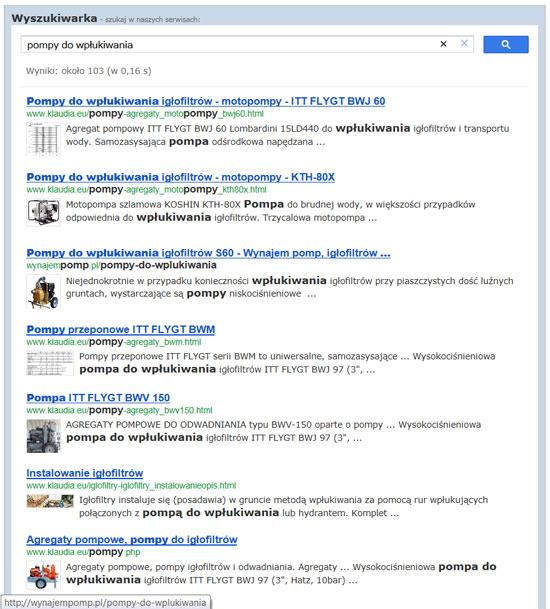 przykładowe wyniki wyszukiwania dla frazy: pompy do wpłukiwania